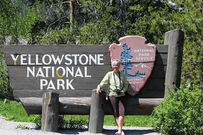 """Parc du Yellowstone En 1872 le Congrès des Etats-Unis accorda à la région de Yellowstone le statut de Parc national. Yellowstone est donc le premier parc ayant bénéficié de ce statut dans le monde. En 1976, à l'occasion du centenaire du parc, l'UNESCO désignait Yellowstone comme Réserve de biosphère. En 1978, enfin, l'inscription du Parc sur la Liste du patrimoine mondial. Yellowstone est un site naturel """"d'une valeur universelle exceptionnelle"""". A ce titre, sa conservation concerne l'humanité tout entière."""