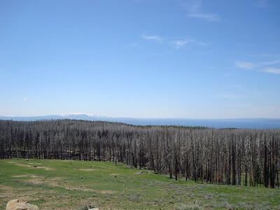 """On arrive au """"col"""" qui domine Yellowstone lake, réputé pour être gavé d'animaux....Pas vu un seul!! Nous sommes à + de 2500m"""